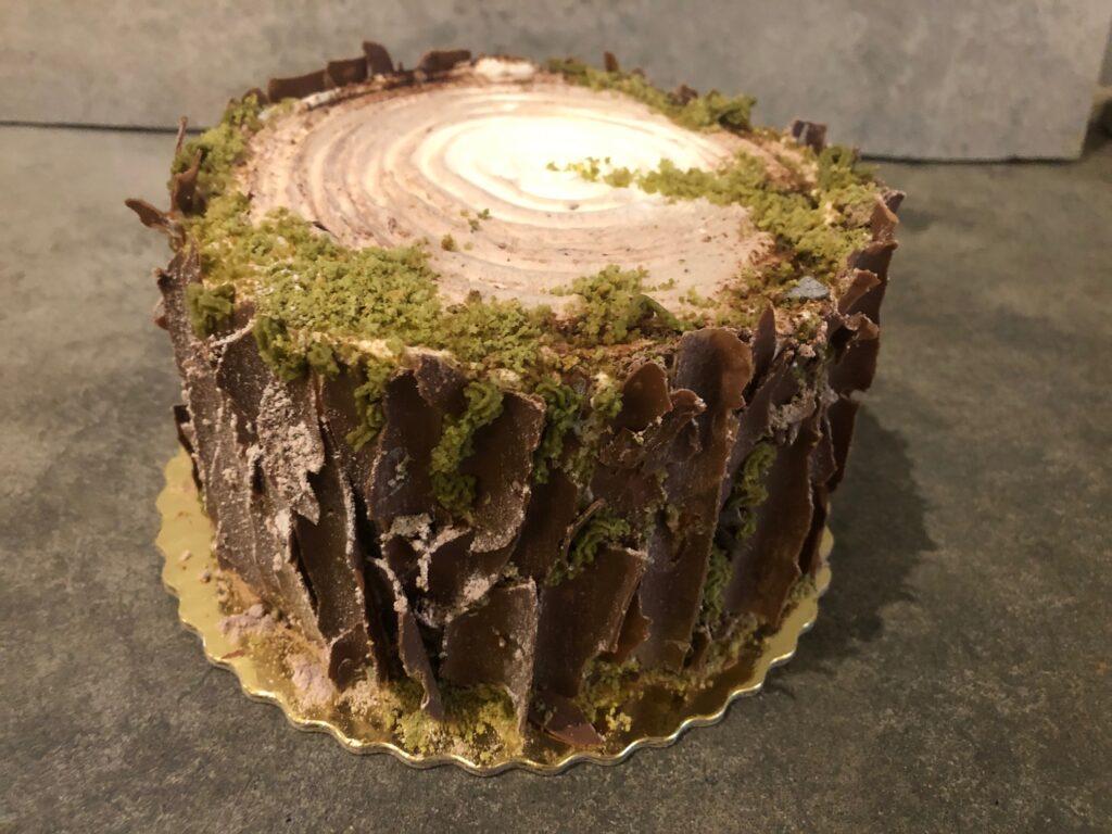Tort pieniek – krok po kroku- jak ozdobić nieszablonowo tort